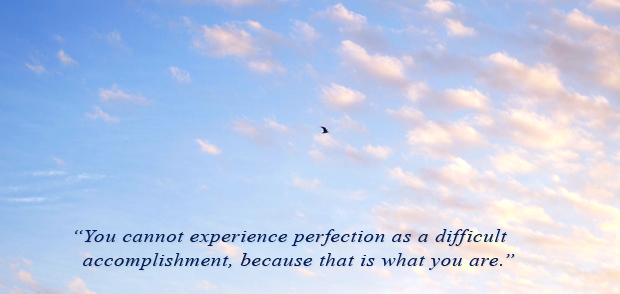 perfection is the way of mind with tim christopher